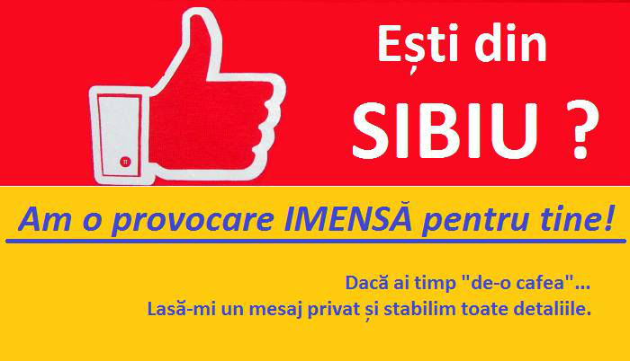 Sibiu Business