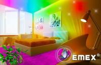 Durabilitatea culorii asigurata cu vopselele lavabile Emex