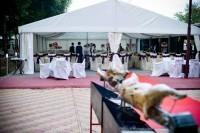 Inchiriem corturi pentru evenimente