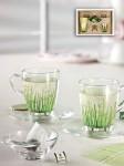 Set cesti din sticla pentru ceai