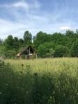 Vand teren pe Valea Avrigului, jud.Sibiu  2600mp
