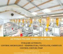 automatizare ferma porci
