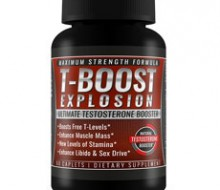 t-boost-exp