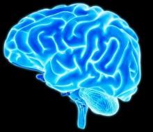 brain.adapt.945.1