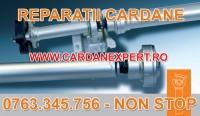 Reparatie Cardan RENAULT